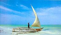 pescadores en  Zanzíbar