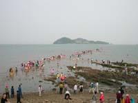 chindo yongdung festival