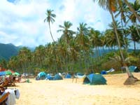 carpas en la playa de choroni