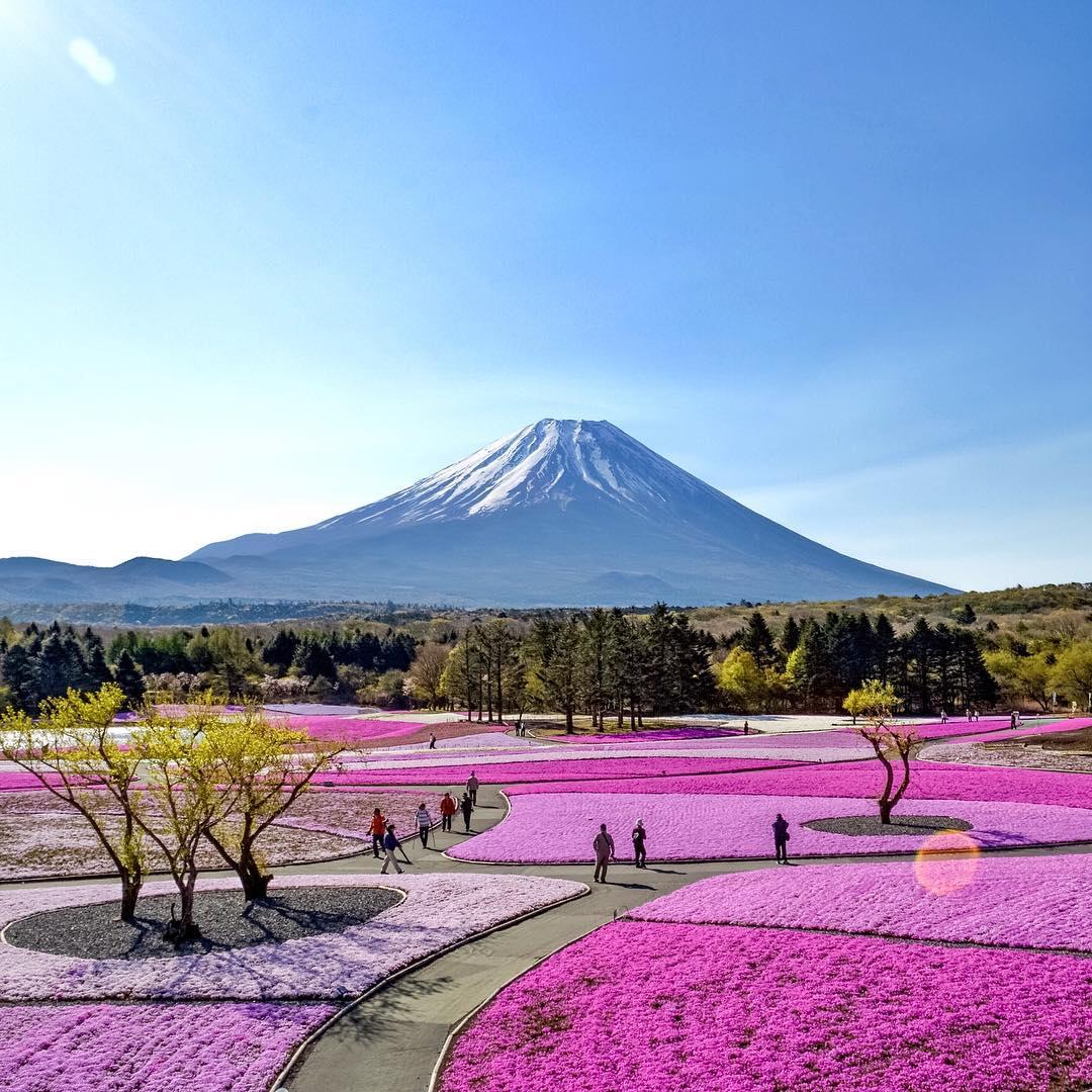 Quieres Subir el Monte Fuji de Japón ?
